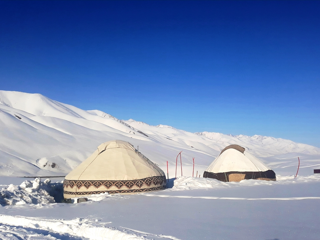Yurt Camp Kagan